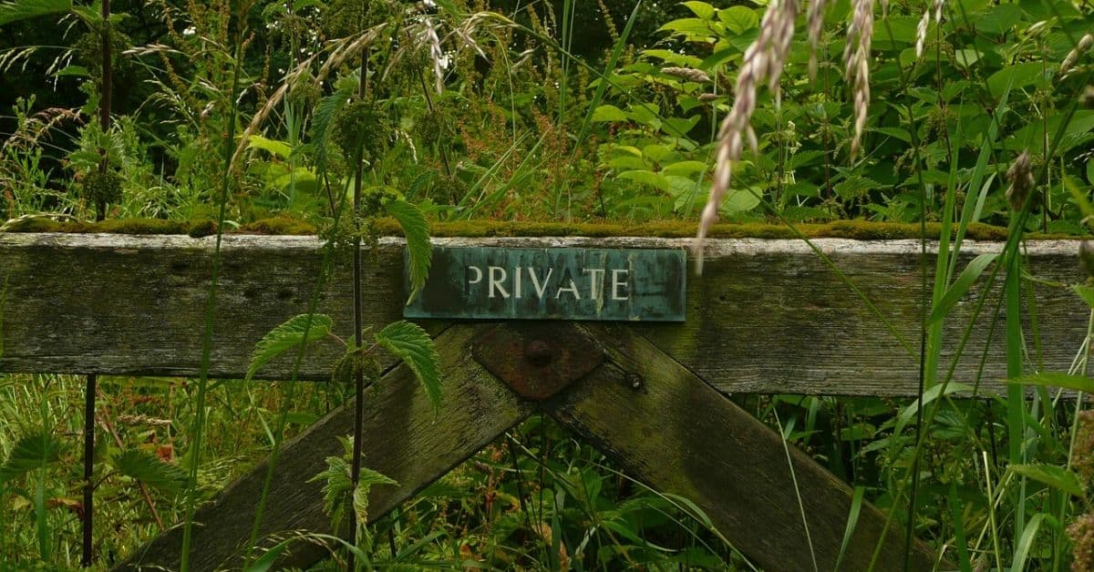 "A worn wooden fence with a sign that says ""Private"" surrounded by overgrown weeds and wildflowers"