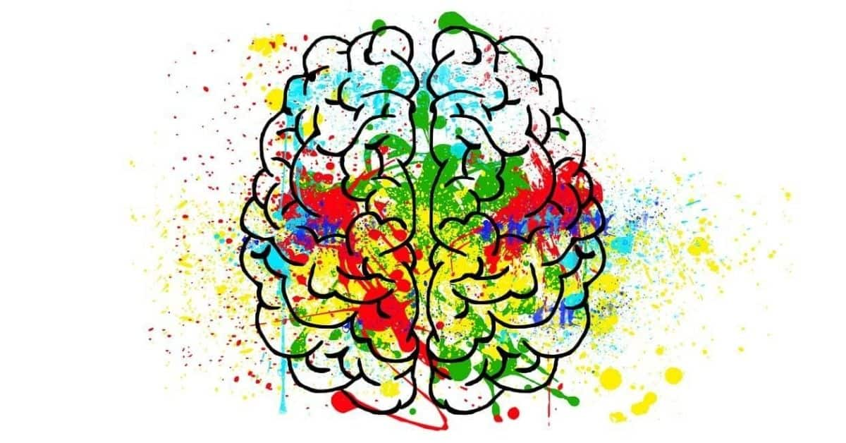 Black line drawing of a brain from the top down with many different colors splattered over it.