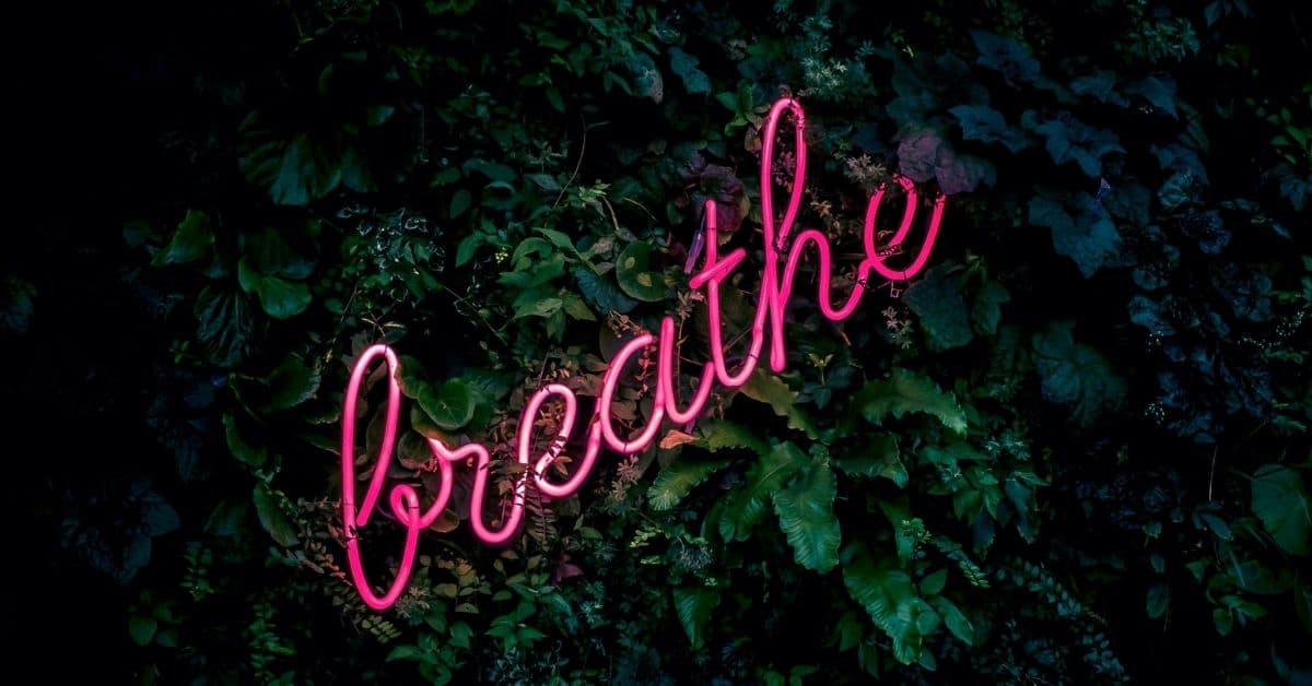 "Pink neon cursive sign reading ""breathe"" among dark green leaves."